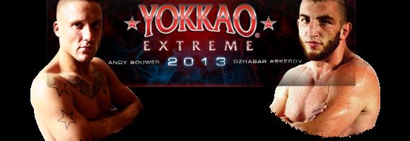 bg_yokkao2013